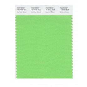 Pantone 14-0156 TCX Swatch Card Summer Green