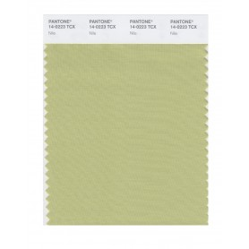 Pantone 14-0223 TCX Swatch Card Nile