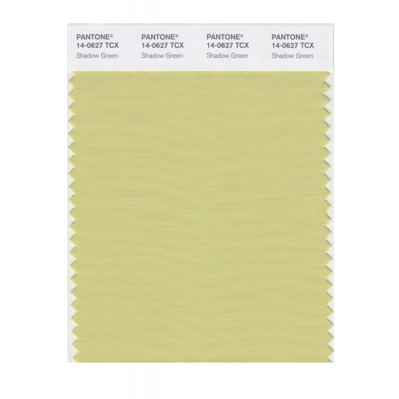 Pantone 14-0615 TCX Swatch Card Green Haze