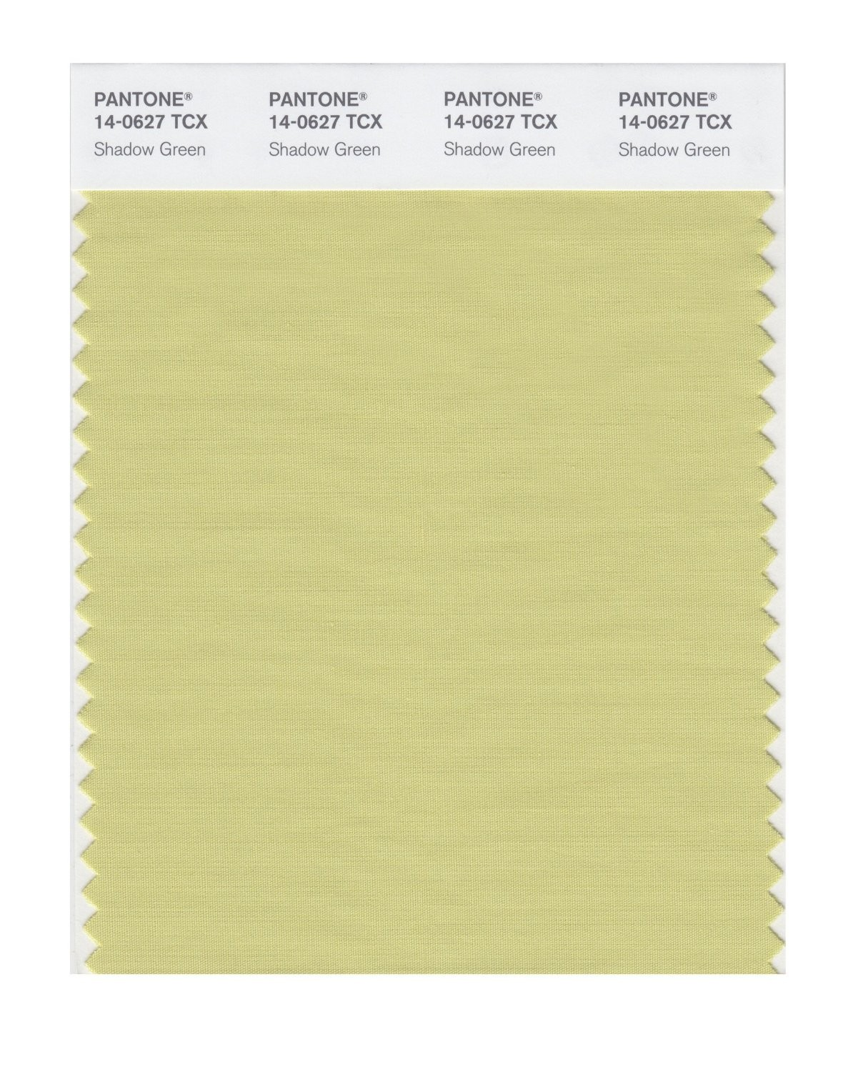 Pantone 14-0627 TCX Swatch Card Shadow Green