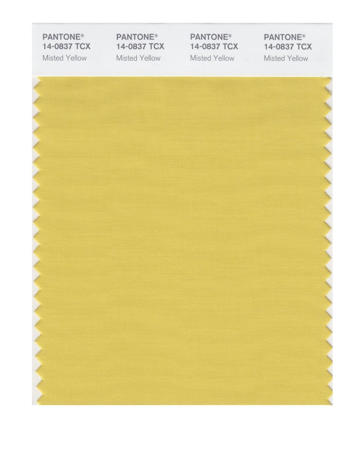 Pantone 14-0837 TCX Swatch Card Misted Yellow