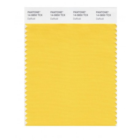 Pantone 14-0864 TCX Swatch Card Yolk Yellow
