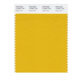Pantone 14-0951 TCX Swatch Card Golden Rod