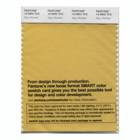 Pantone 14-0952 TCX Swatch Card Spicy Mustard