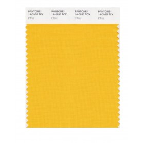 Pantone 14-0955 TCX Swatch Card Citrus