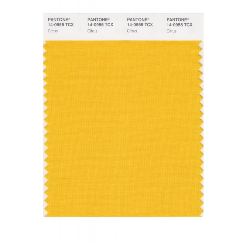 Pantone 14-0852 TCX Swatch Card Freesia
