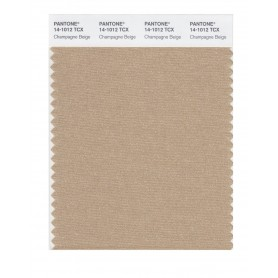 Pantone 14-1012 TCX Swatch Card Champagne Beige