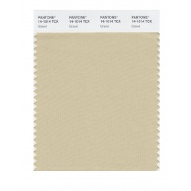Pantone 14-1014 TCX Swatch Card Gravel