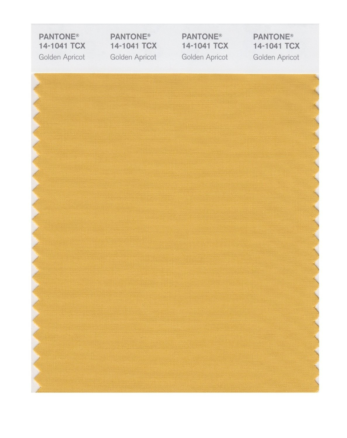Pantone 14-1041 TCX Swatch Card Golden Apricot