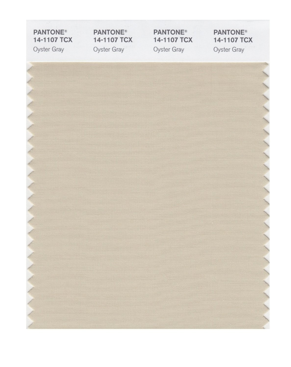 Pantone 14-1107 TCX Swatch Card Oyster Gray