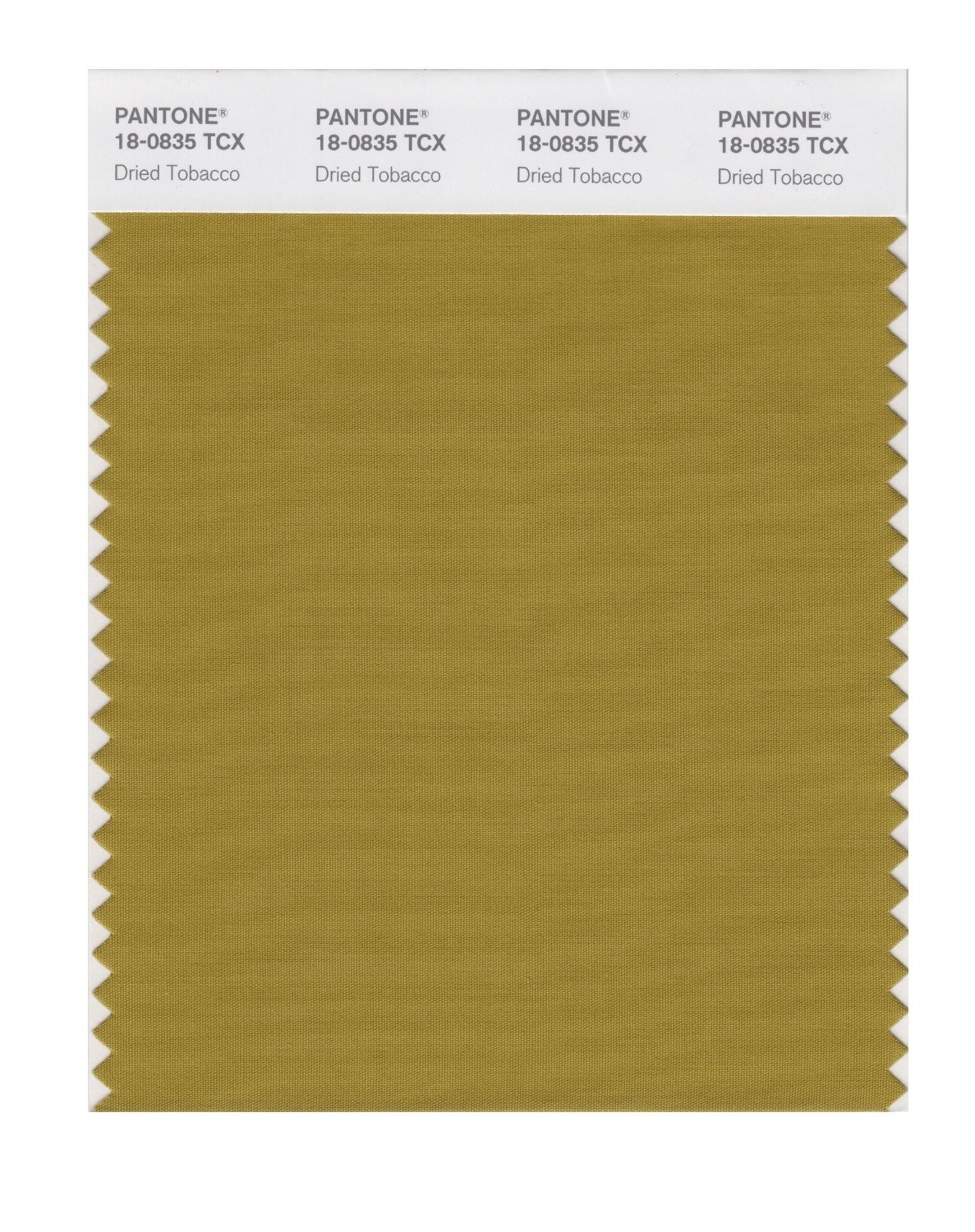 Pantone 18-0835 TCX Swatch Card Dried Tobacco