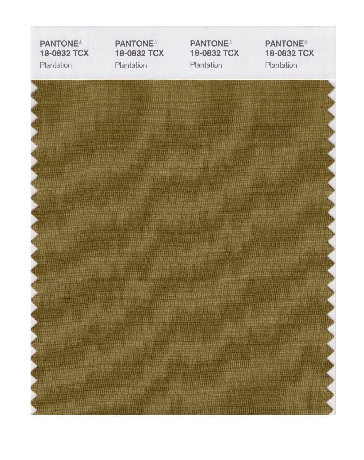 Pantone 18-0832 TCX Swatch Card Plantation