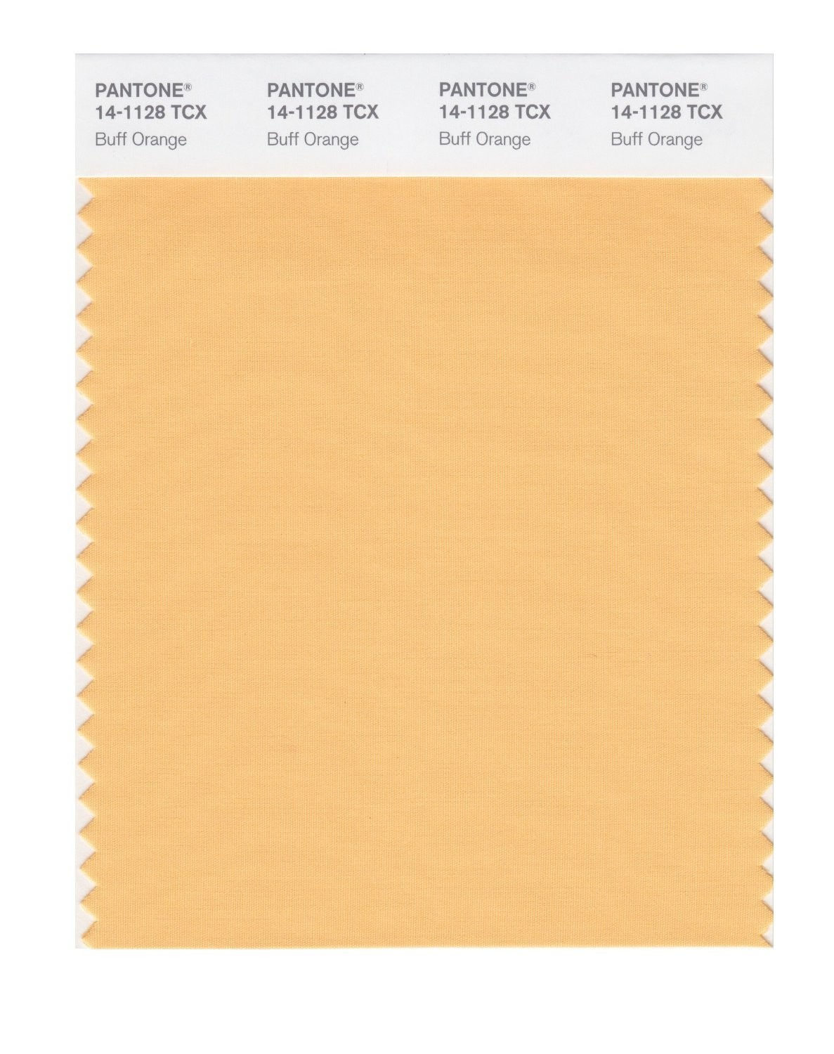 Pantone 14-1128 TCX Swatch Card Buff Orange