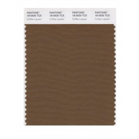 Pantone 18-0930 TCX Swatch Card Coffee Liqueur