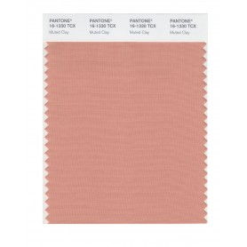Pantone 16-1330 TCX Swatch Card Muted Clay