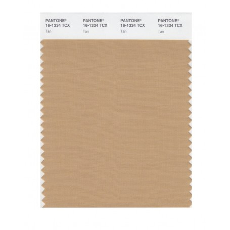 Pantone 16-1334 TCX Swatch Card Tan