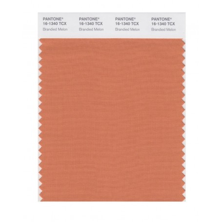 Pantone 16-1340 TCX Swatch Card Brandied Melon
