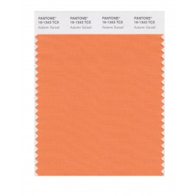 Pantone 16-1343 TCX Swatch Card Autumn Sunset