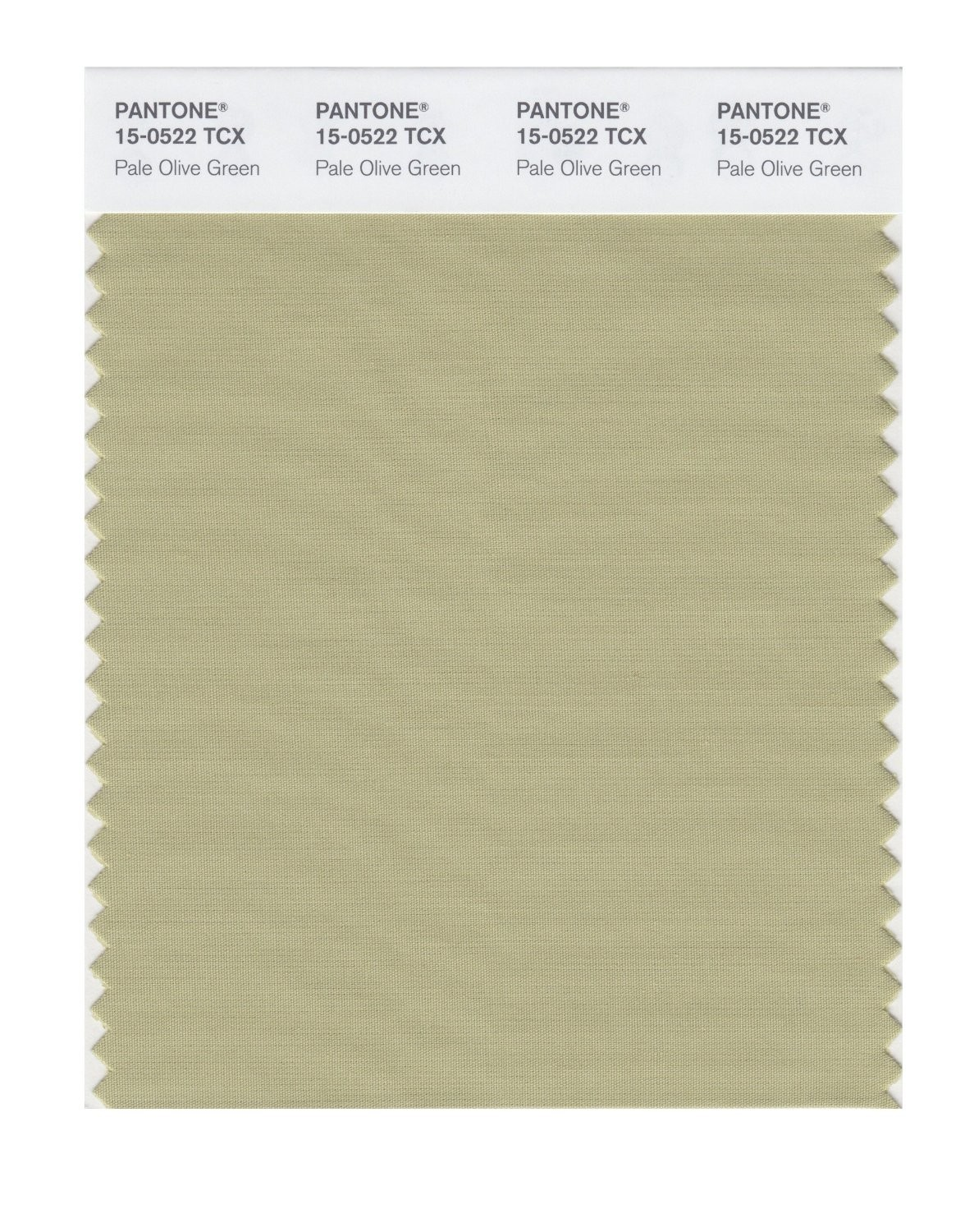 Pantone 15-0522 TCX Swatch Card Pale Olive Green