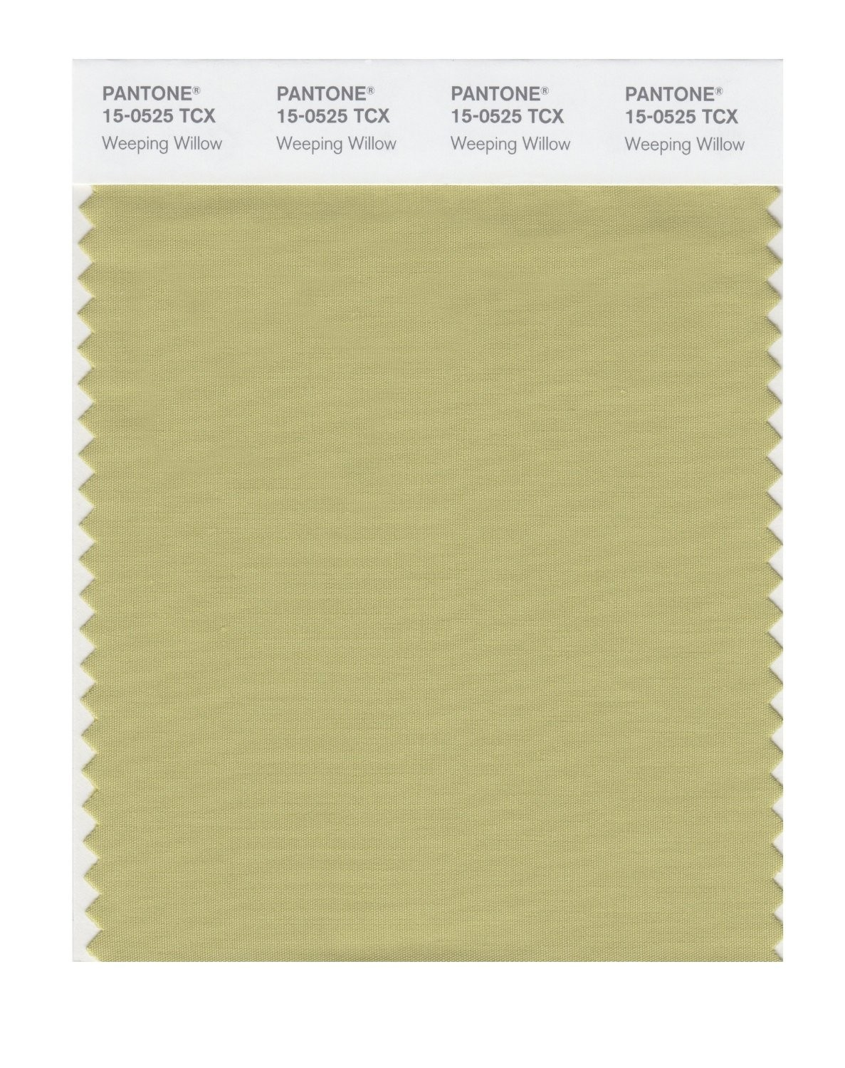 Pantone 15-0525 TCX Swatch Card Weeping Willow