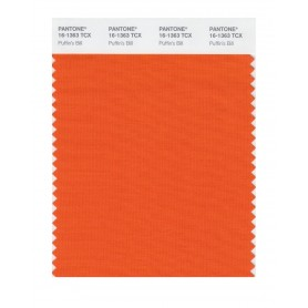 Pantone 16-1363 TCX Swatch Card Puffin's Bill