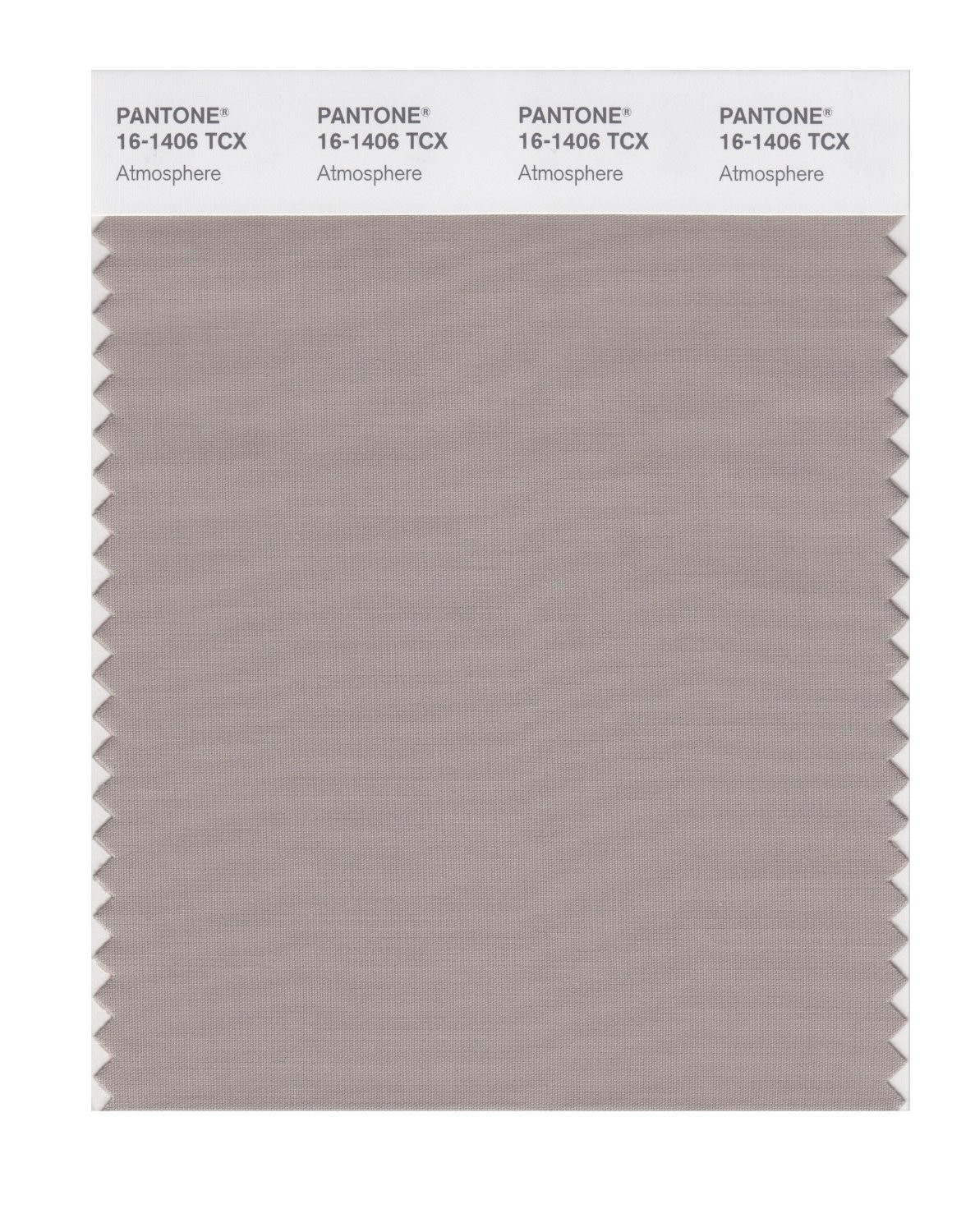 Pantone 16-1406 TCX Swatch Card Atmosphere