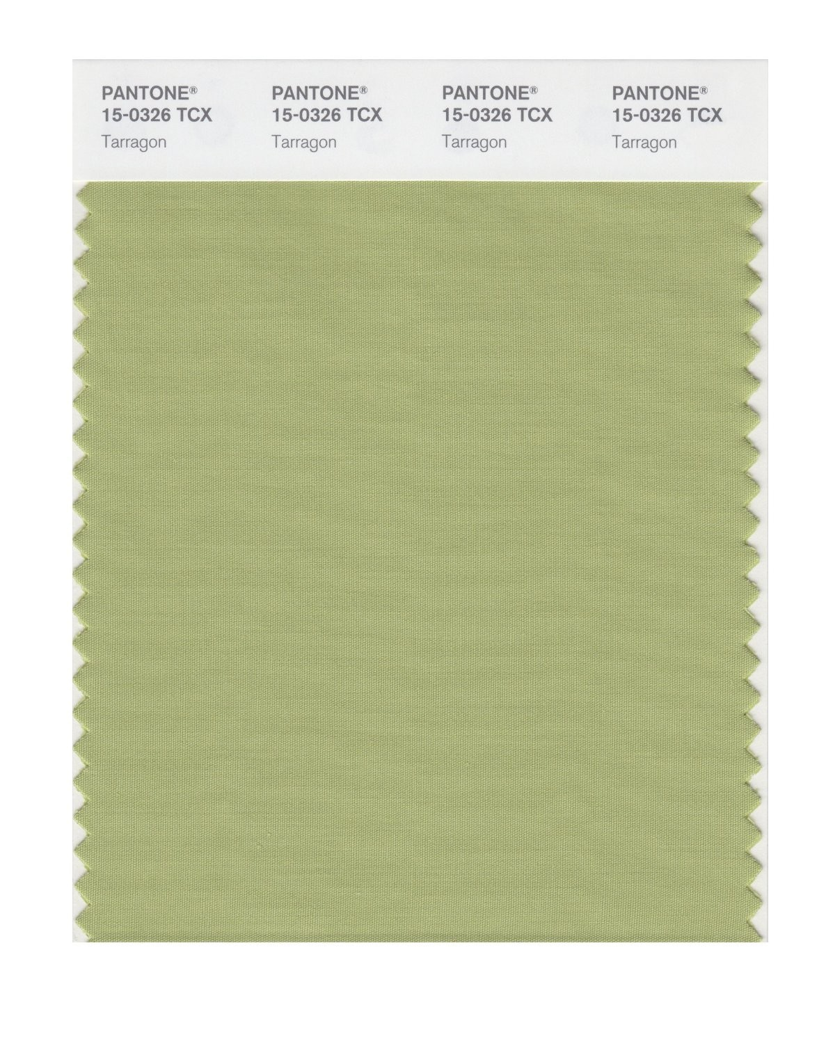 Pantone 15-0326 TCX Swatch Card Tarragon