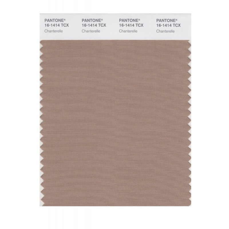 Pantone 16-1414 TCX Swatch Card Chanterelle