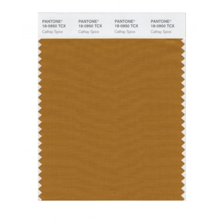 Pantone 18-0950 TCX Swatch Card Cathay Spice