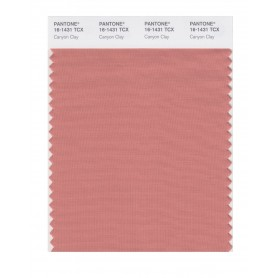 Pantone 16-1431 TCX Swatch Card Canyon Clay