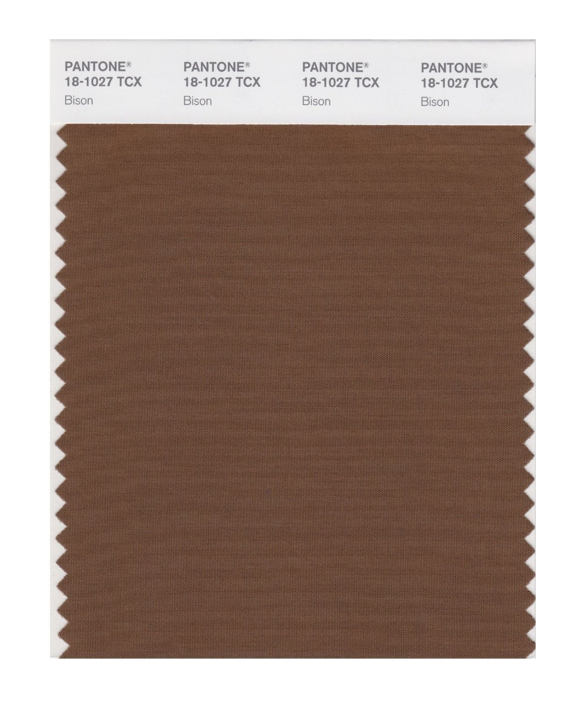 Pantone 18-1027 TCX Swatch Card Bison