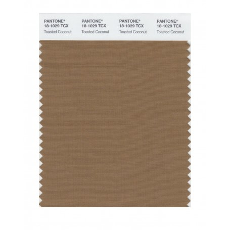 Pantone 18-1029 TCX Swatch Card Toasted Coconut