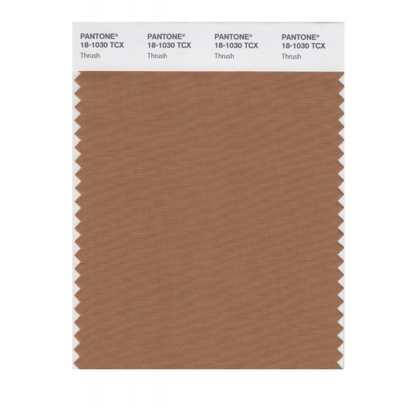 Pantone 18-0940 TCX Swatch Card Golden Brown