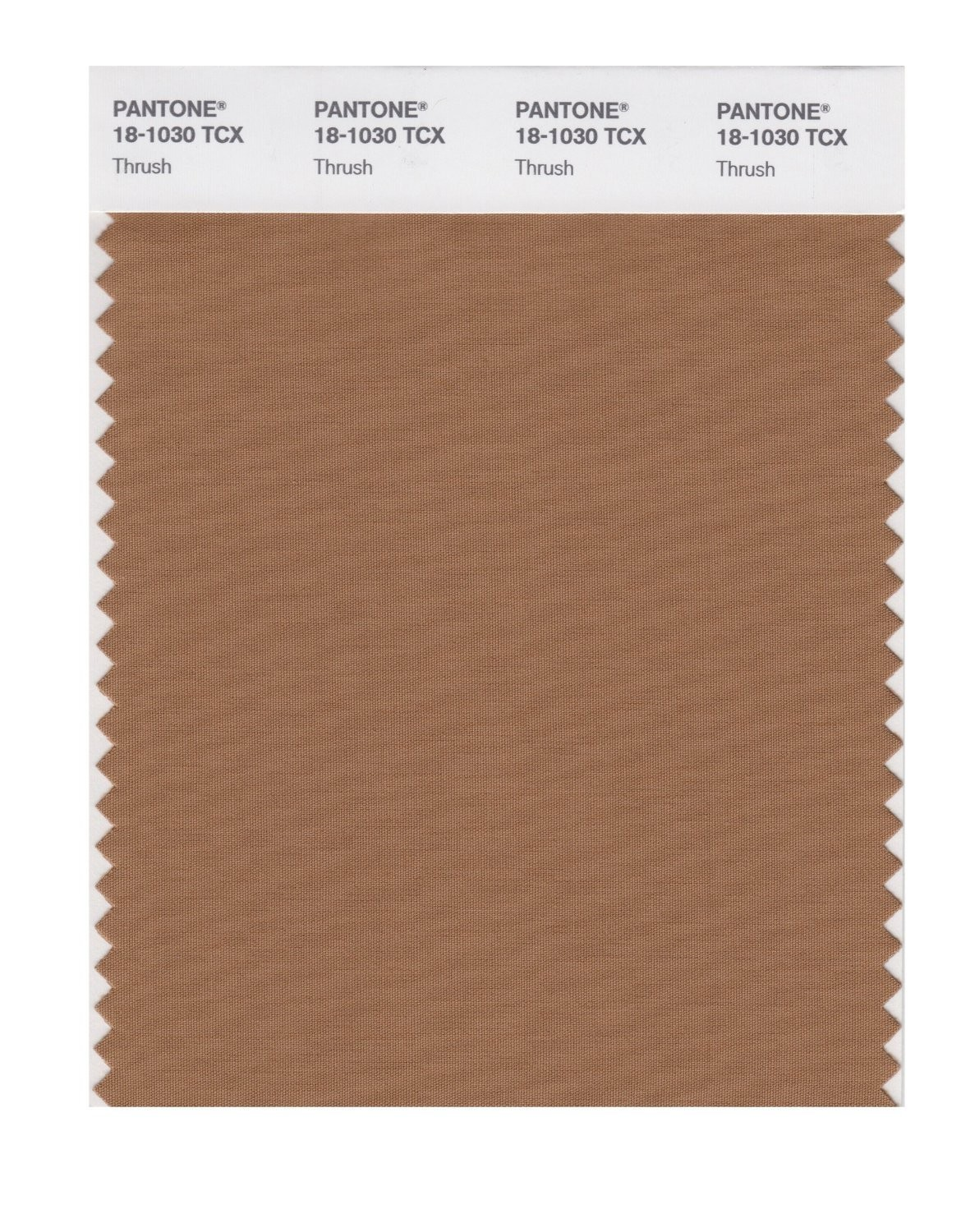 Pantone 18-1030 TCX Swatch Card Thrush