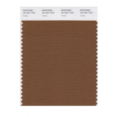 Pantone 18-1031 TCX Swatch Card Toffee