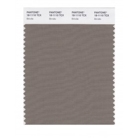 Pantone 18-1110 TCX Swatch Card Brindle