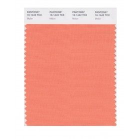 Pantone 16-1442 TCX Swatch Card Melon