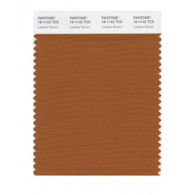 Pantone 18-1142 TCX Swatch Card Leather Brown