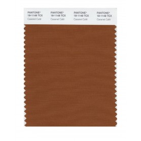 Pantone 18-1148 TCX Swatch Card Caramel Cafe