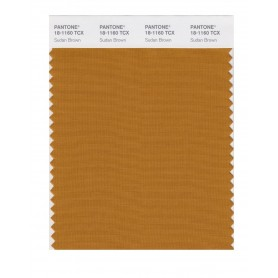 Pantone 18-1160 TCX Swatch Card Sudan Brown