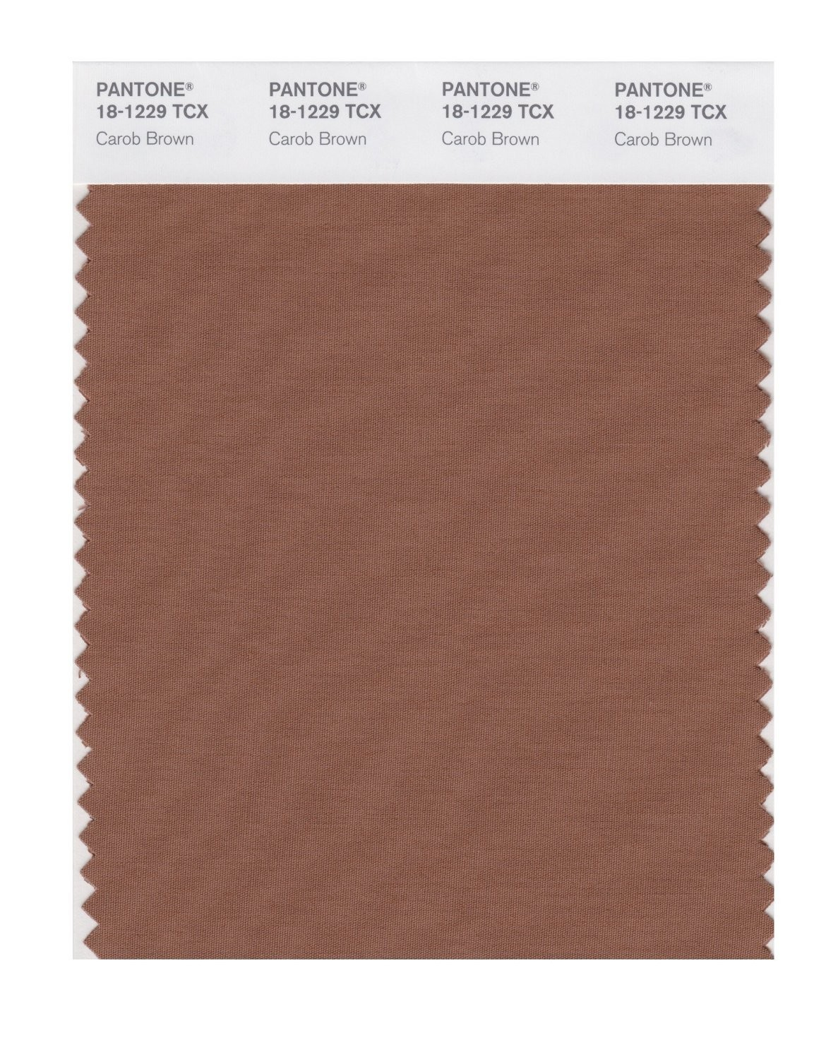 Pantone 18-1229 TCX Swatch Card Carob Brown