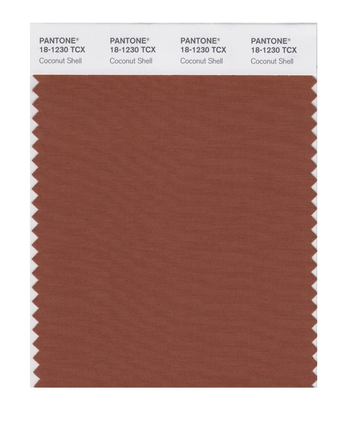 Pantone 18-1230 TCX Swatch Card Coconut Shell