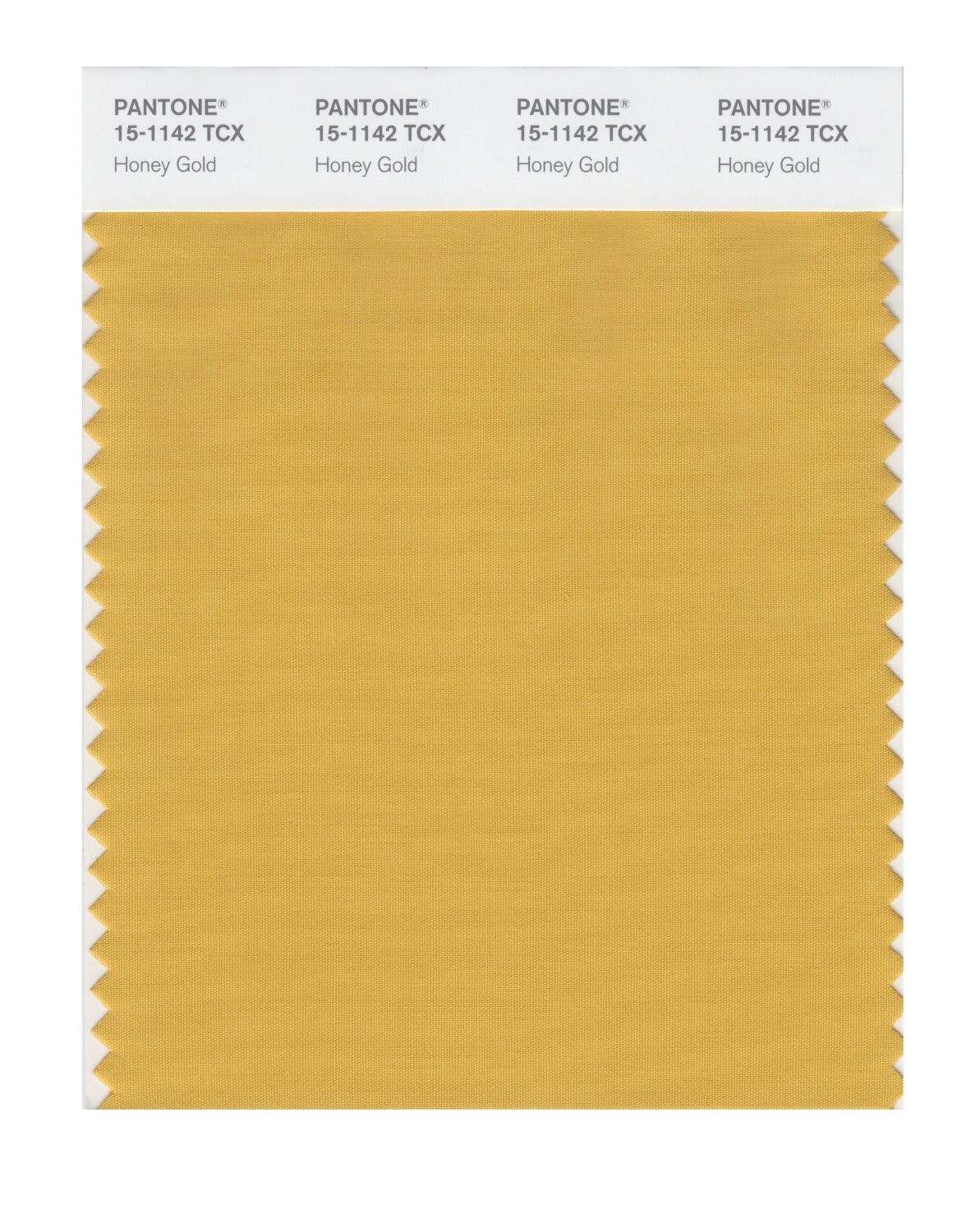 Pantone 15-1142 TCX Swatch Card Honey Gold