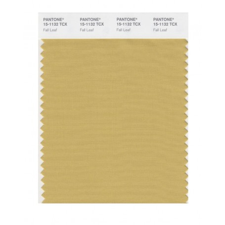 Pantone 15-1132 TCX Swatch Card Fall Leaf