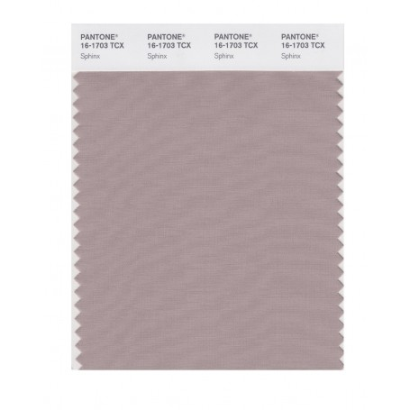 Pantone 16-1703 TCX Swatch Card Sphinx