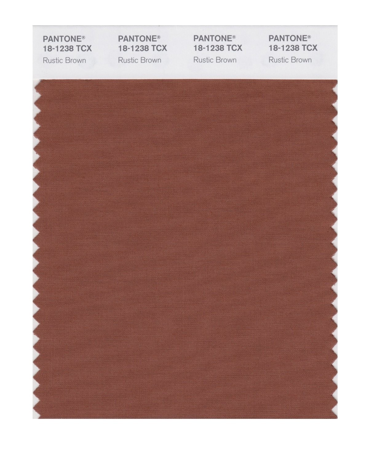 Pantone 18-1238 TCX Swatch Card Rustic Brown