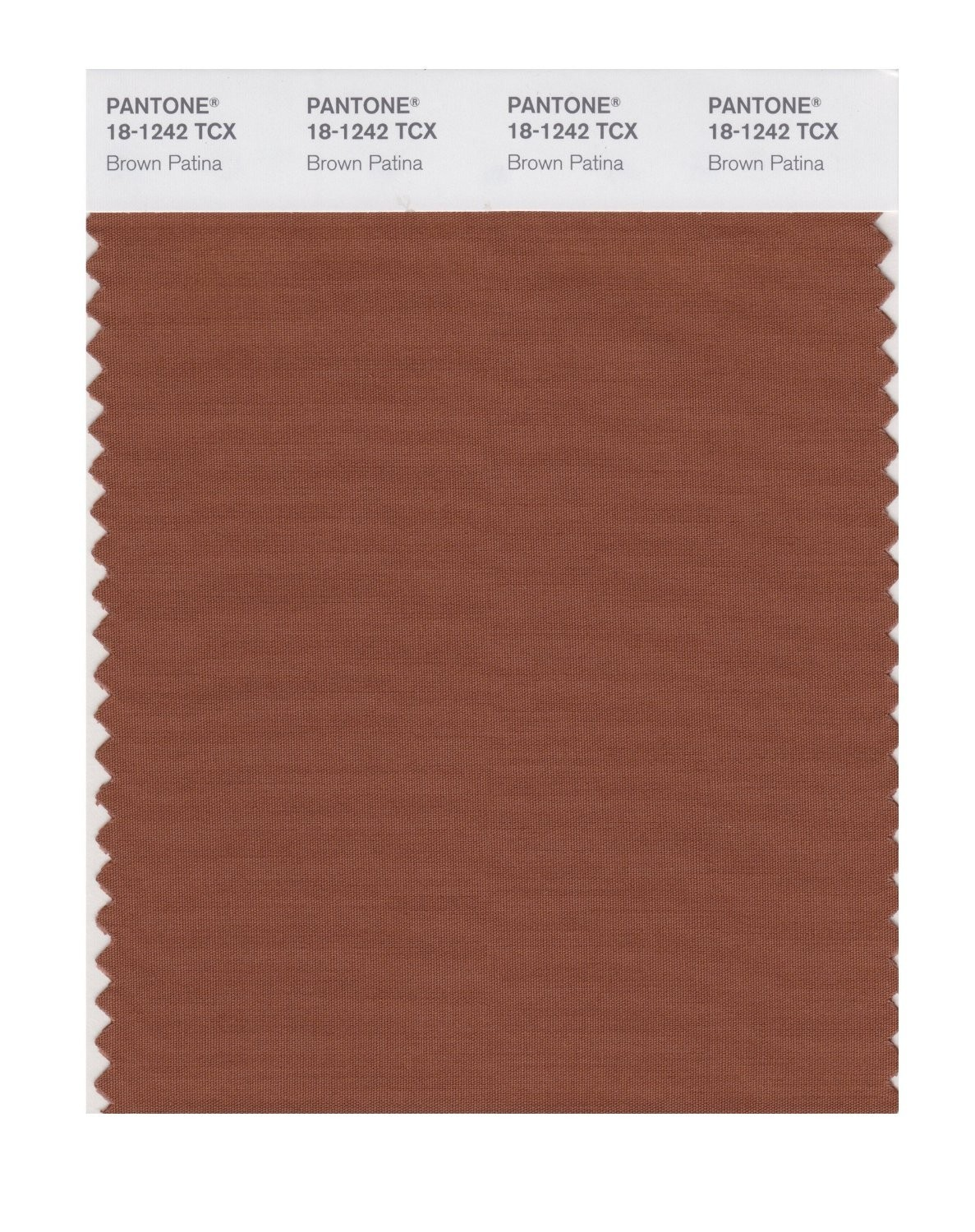 Pantone 18-1242 TCX Swatch Card Brown Patina