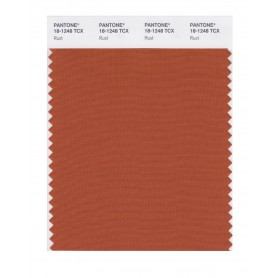 Pantone 18-1248 TCX Swatch Card Rust