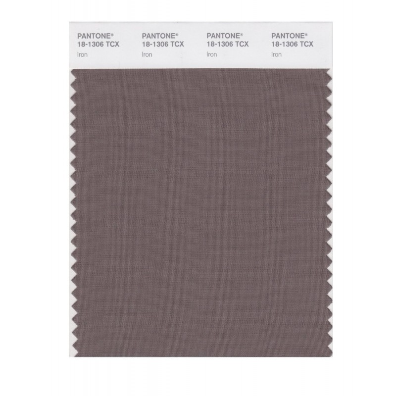 Pantone 18-1306 TCX Swatch Card Smoked Pearl