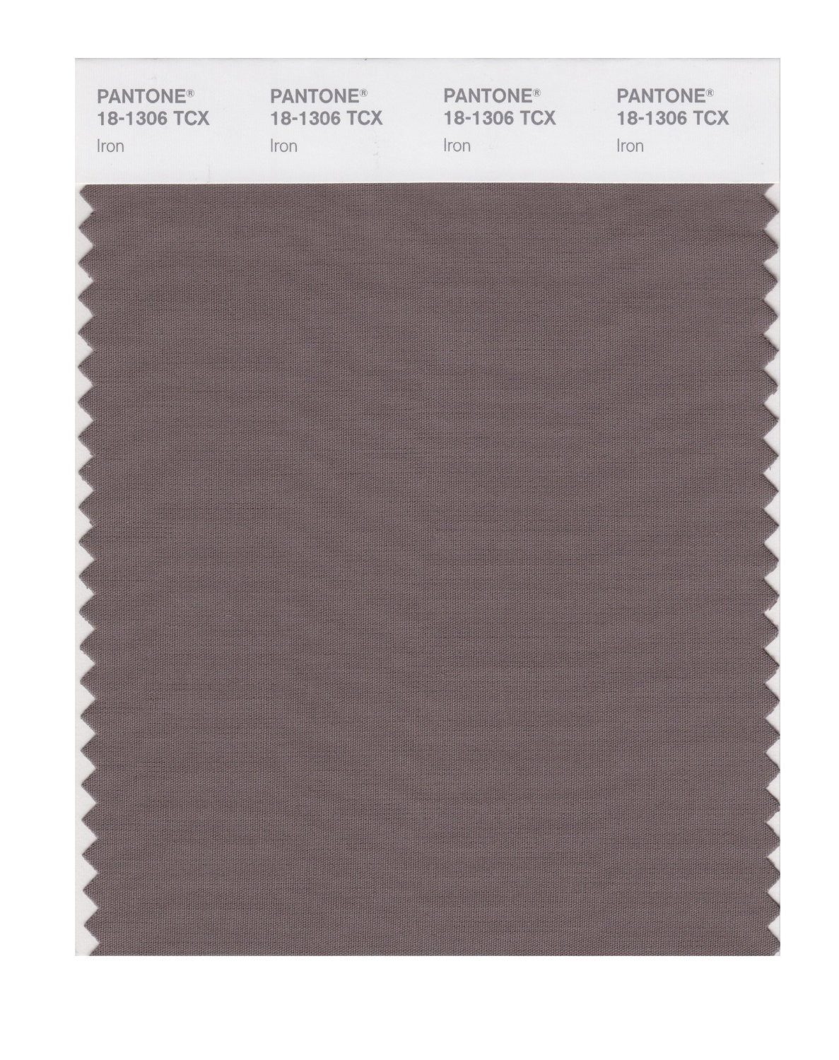Pantone 18-1306 TCX Swatch Card Iron